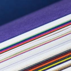 Un large choix en coloris avec les couvertures pour reliure thermique Pop'Set